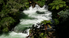 Stock Video Footage of Wildwater rafting in Rotorua New Zealand