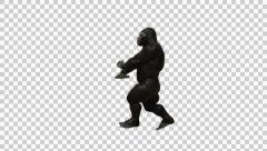 Gorilla Funny Hip Hop Street Dance 1 Stock Footage