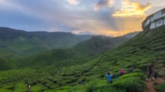 Time lapse 4k Sunset At Cameron Highland Malaysia With Zoom Out Effect. Stock Footage