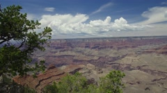 Grand Canyon Summer Afternoon-South Rim Stock Footage