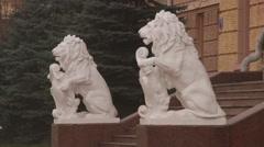 Chernivtsi regional state administration. Lions. - stock footage