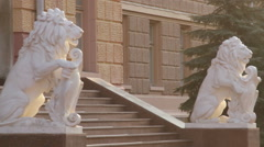 Chernivtsi regional state administration. Lions. Stairs. - stock footage