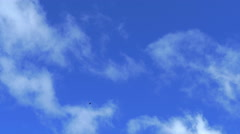 Slow motion of tropical clouds with flying birds. Original size 4K 2160. Stock Footage