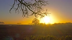 Sunrise autumn English landscape Stock Footage