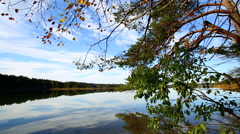 View to a lake in autumn Stock Footage