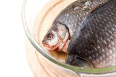 Uncooked fish - stock photo