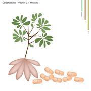 Stock Illustration of Taro with Carbohydrates, Vitamin E, Vitamin B6, Minerals
