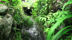 Storm Drain In Green Forest Ome Japan Stock Footage