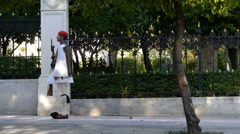 Evzone soldier outside the Presidential Mansion. Athens Stock Footage