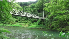 Suspension Bridge Tama River In Forest Stock Footage