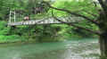 Trees And Suspension Bridge Crossing The Tama River In Green Forest Footage