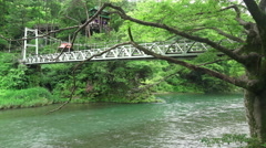 Trees And Suspension Bridge Crossing The Tama River In Green Forest Stock Footage
