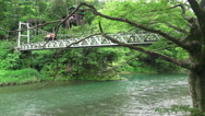Stock Video Footage of Trees And Suspension Bridge Crossing The Tama River In Green Forest