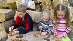 Stock Video Footage of Children hammer smash nuts and eat them