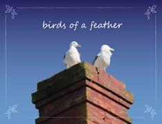 Seagulls on Chimney - stock illustration