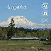 Let's Get Lost at Mount Rainier Stock Illustration
