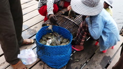 People selling blue crabs at the market Stock Footage