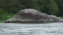 Water Flowing Around Big Rock In Forest Tama River 02 Stock Footage