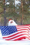 Santa patriot - stock photo