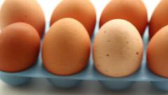 Fresh eggs close up Stock Footage