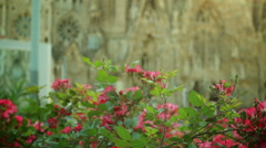 Sagrada Familia and flowers in Barcelona, Spain. Stock Footage