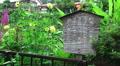 Wooden Japanese Sign Near Flower Garden 4k or 4k+ Resolution