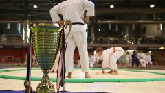 Sumo match cup medals judge sensei Stock Footage
