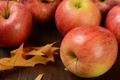 Gala apples - stock photo