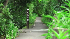 Zoom Out Pathway Thru Green Japanese Forest Near Tama River Stock Footage