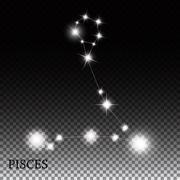 Stock Illustration of Pisces Zodiac Sign of the Beautiful Bright Stars Vector Illustra