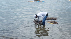 Man catching blue crabsand sells  at the market in Kep, Cambodia Stock Footage