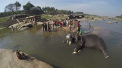 Indian man washing an elephant in water, with people standing in background. Stock Footage
