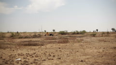 Bulldozer digging water dam on drought eroded land, long shot, shallow DOF Stock Footage