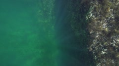 Solar rays penetrate deep into the water in slow motion Stock Footage