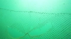 Two holes in a fishing net into the water Stock Footage