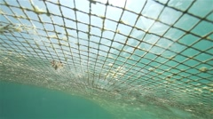 Fishing net in the sea surface illuminated by sunlight spectacular Stock Footage
