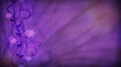 Purple Flourish 1080  background - stock footage