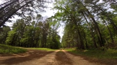Scull Shoals Experimental Forest 05-09-2015 Stock Footage
