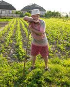 Farmer hoeing vegetable garden Stock Photos