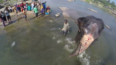 Elephant walking in water after washing, with people standing on shore. Stock Footage