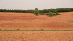 Recently Plowed Farmland and Pinewood Stock Footage