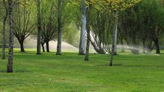 Sprinkler Irrigation on Spring Park Stock Footage