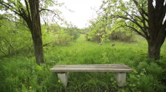 Empty Bench in an Abandoned Park 2 - stock footage
