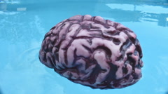 Floating brain 1 Stock Footage