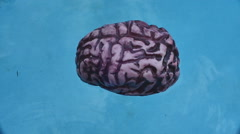 Floating brain 2 Stock Footage