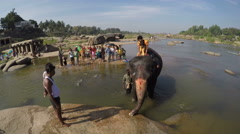Elephant carrying father and child on back in water, with people watching aside. Stock Footage
