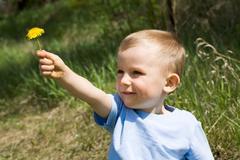 Dandelion present - stock photo