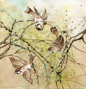 Three sparrows - stock photo