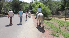Horses and men walks on a road Stock Footage