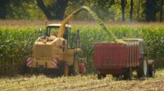 corn harvesting for livestock - stock footage